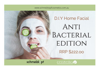 anti bacterial kit lady cucumber face mask
